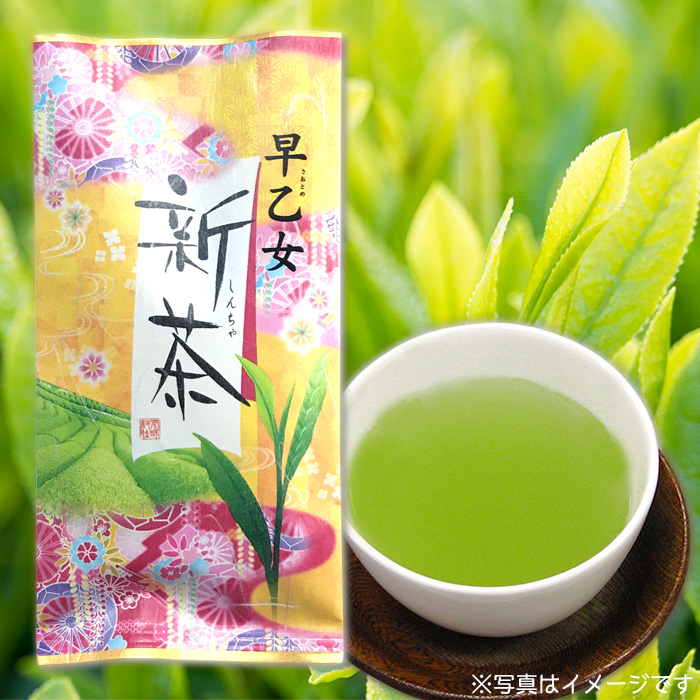 新茶 早乙女(平袋)
