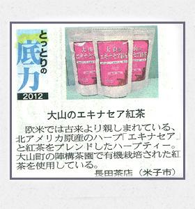 大山のエキナセア紅茶(日本海新聞)